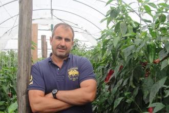 Héjjas Gábor, 365 üzleti történet