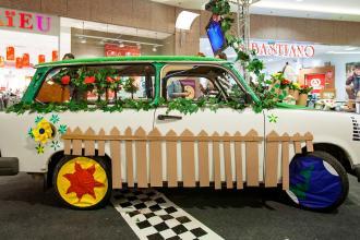 autó, környezet, virág