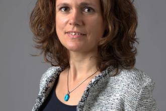 Balatoni Judit, 365 üzleti történet